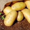 Ξενοδοχείο στην Κρήτη καλλιεργεί πατάτες