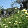 Ρόδος: Μαθητές από τη Θεσσαλονίκη στο Κέντρο Περιβαλλοντικής Εκπαίδευσης Πεταλούδων