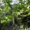 Υπ. Περιβάλλοντος: Ανάδειξη των υδάτινων διαδρομών της Αθήνας