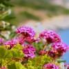 Ο οικολογικός φόρος απέφερε 32 εκατ. ευρώ στις Βαλεαρίδες Νήσους
