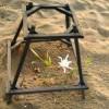 ΑΡΧΕΛΩΝ: Δημόσια εκσκαφή φωλιάς θαλάσσιας χελώνας στη Ζάκυνθο